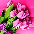 Тюльпаны-на-8-марта-700x394